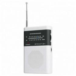 Brigmton BT-350-B rádio Portátil Digital Cinzento, Branco