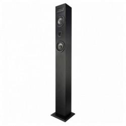 Brigmton BTW-41-N haut-parleur 40 W Noir