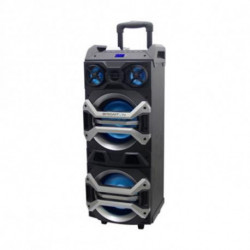 BRIGMTON Portable Bluetooth Speakers BAP 900 900W Black