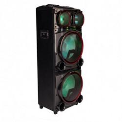 NGS Wildpunk 3 Lautsprecher 1000 W Schwarz