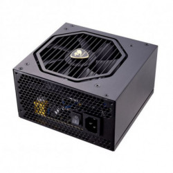 Cougar Source d'alimentation Gaming 31GS055.0003P 550W