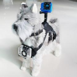 Imbracatura per Animali Domestici con Supporto per Fotocamera Sportiva Nero