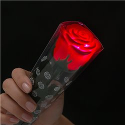 Red Rose with Multicoloured LEDs