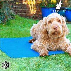Materassino Rinfrescante per Animali Domestici Pet Prior (65 x 50 cm)