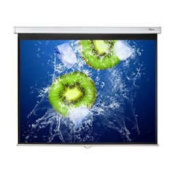 "Optoma DS-3120PMG+ projection screen 3.05 m (120"") 4:3"