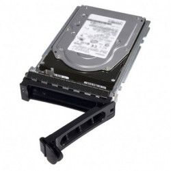 DELL 2TB SAS 3.5 2000 GB